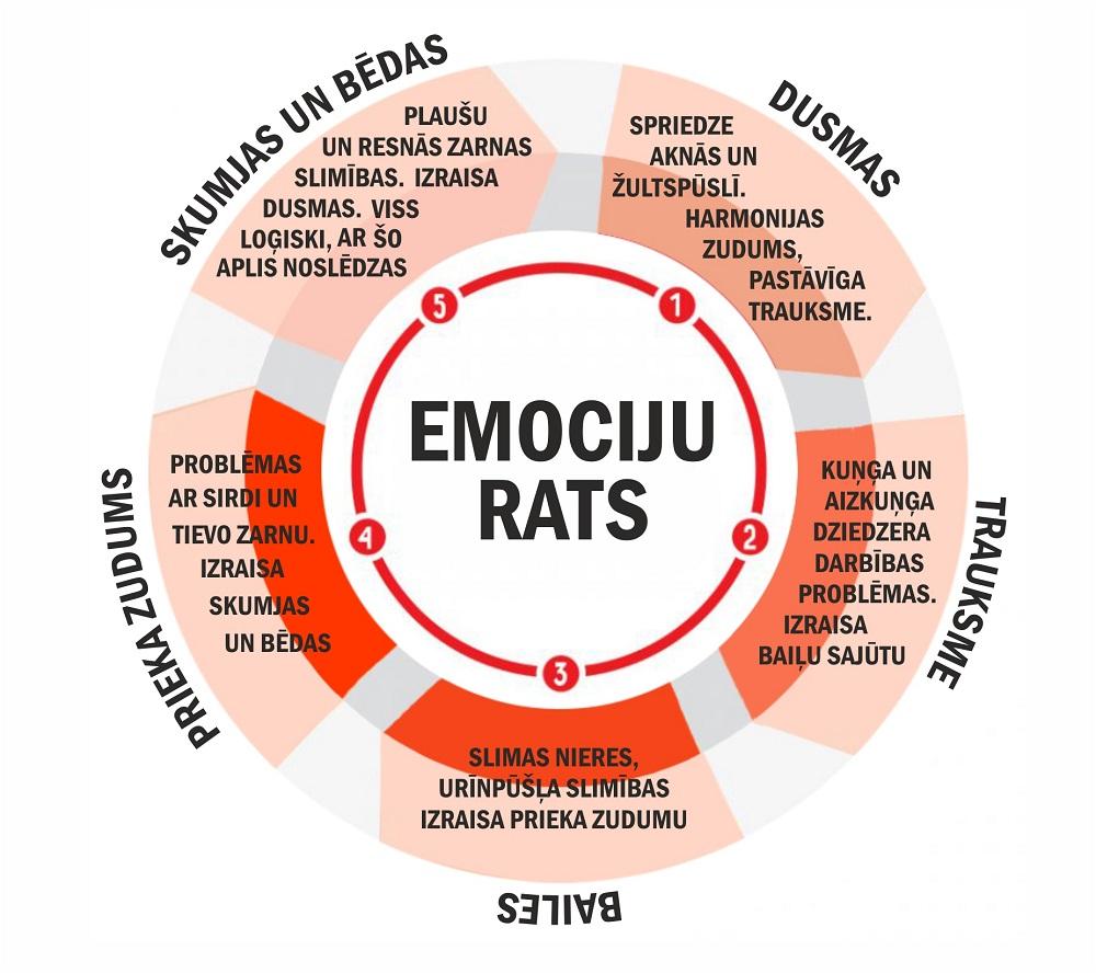 emociju_rats