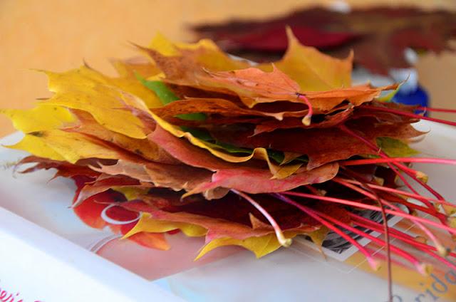 autumn-278