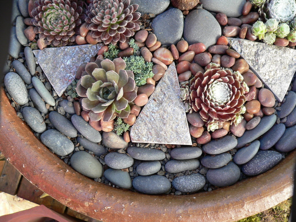 decorative-pebble-stones