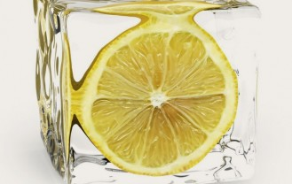 saldets_citrons