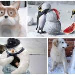 sniegaviri_galvena