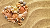Heart made of sea shells and the starfish lying on a beach sand