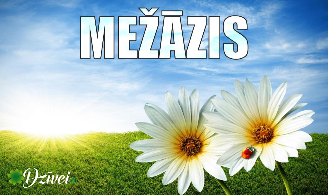 mezazis