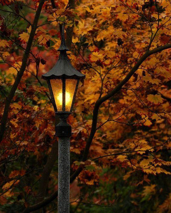 0660a6b88d18057f965bcc20cc3eb93d--photo-sites-outdoor-lighting