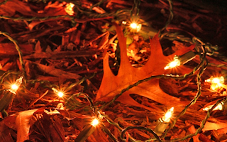 holiday-party-fallwinter-470