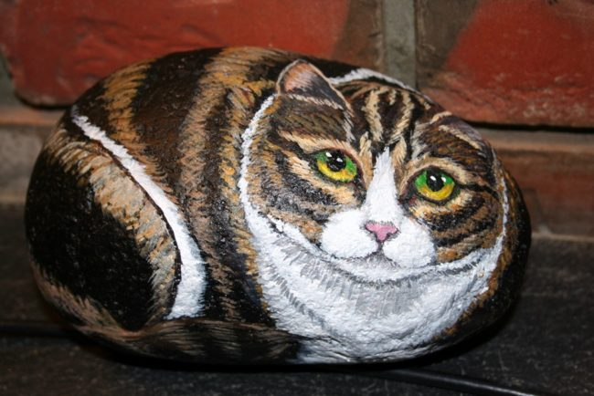 Painted-cat-rocks-650x434