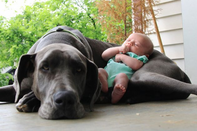 kids-with-dogs-19__700-631x420