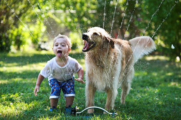 kids-with-dogs-332__700-630x420