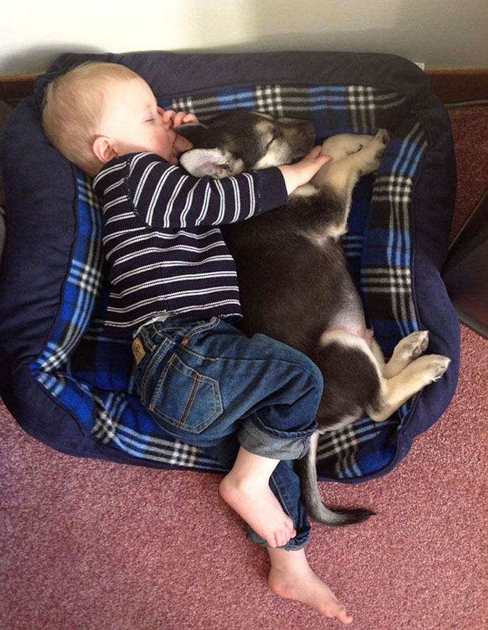 kids-with-dogs-52__700