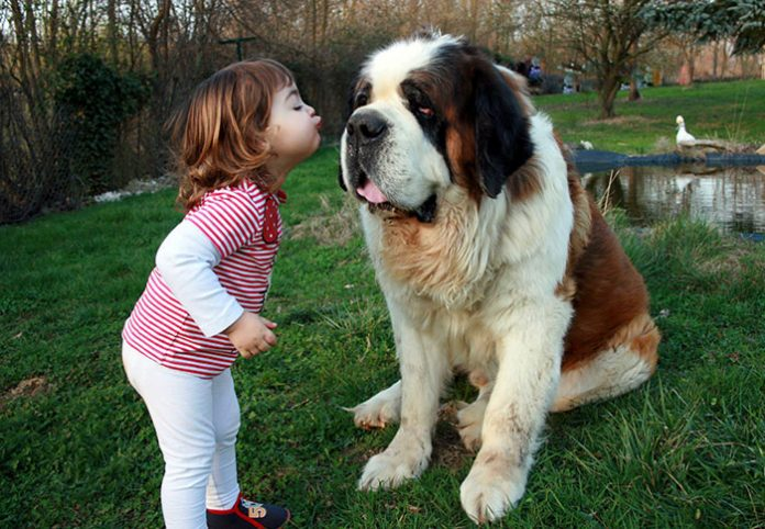 kids-with-dogs-68__700-696x482