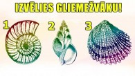 384579fb-b110-4177-8a90-2fbecaab905d