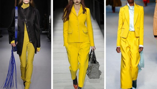fall_winter_2018_2019_color_trends_ceylon_yellow