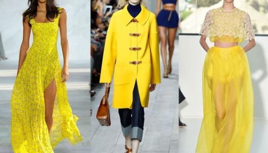 yellow-main-560x395
