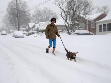 iela_sniegs