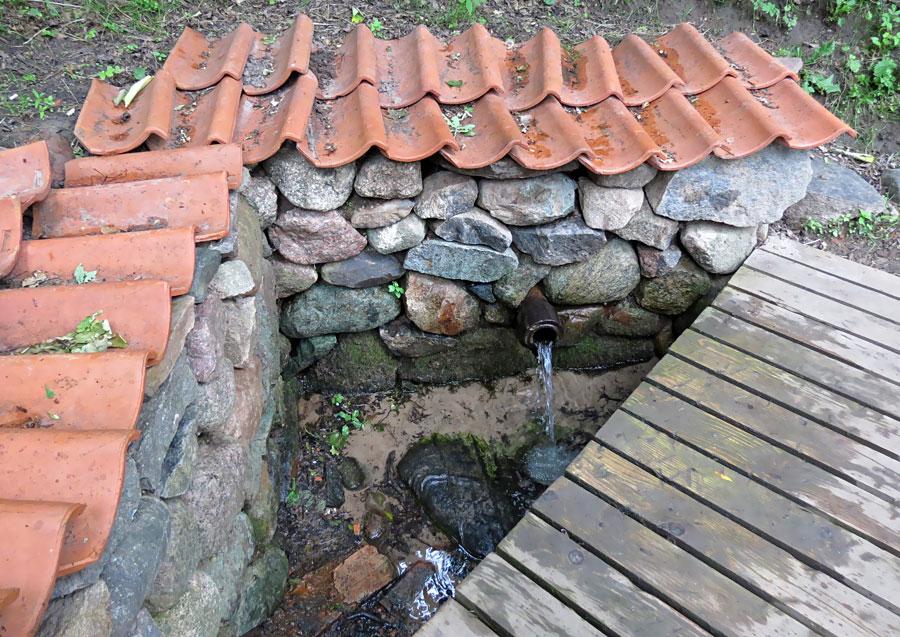 Foto - www.dziedava.lv