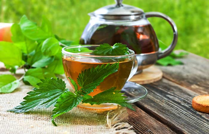 How-To-Make-Nettle-Leaf-Tea