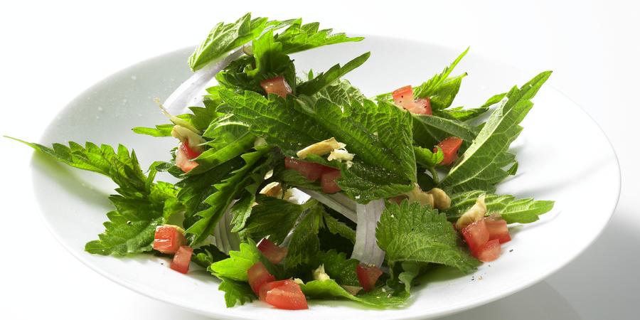 nettle-tomato-salad